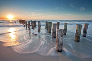 the-gulf-coast-image